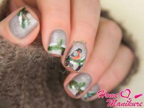 Очаровательный дизайн ногтей со снегирями