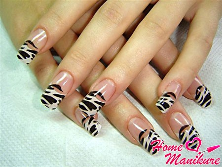 ногти френч с рисунком зебры