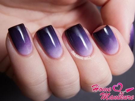 омбре в темно-фиолетовых тонах