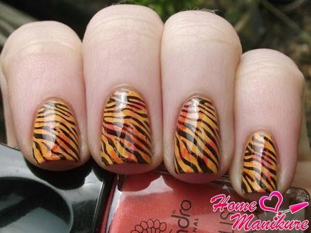 тигровый маникюр с помощью стемпинга