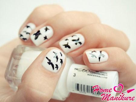 черные рисунки птиц на белых ногтях
