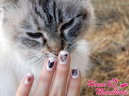 Нейл-арт с кошками для хорошего настроения