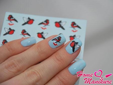 слайдер дизайн для ногтей со снегирями