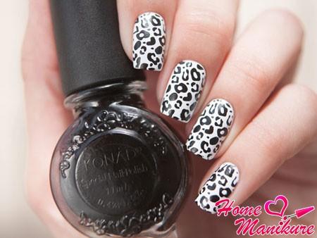 черно-белый леопард на ногтях лаком Konad